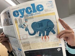 cycle41.jpg